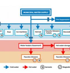 plumbing stagnation in buildings
